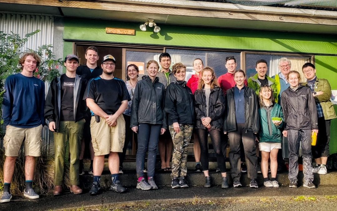 Volunteer medley: stories of our team's work within the Ark and across Aotearoa